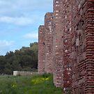Alcazaba exterior wall - Malaga by evilcat