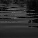 Waterlines in Black by Valarie Napawanetz