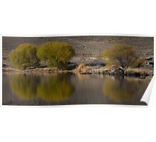 Central Otago Reflections Poster