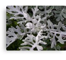 Gargoyles (strange figures among plant leaves) Canvas Print