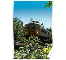 VIA Rail - 6135 Poster