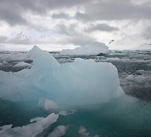 Cool as ice by Lisa Davidson