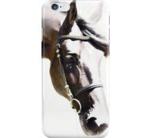 Friesian iPhone Case/Skin