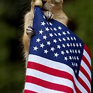 The Little Patriot by Betsy  Seeton