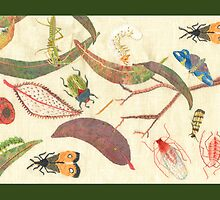 """Leaf litter with bugs"" by Mary Taylor"