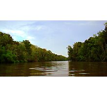 Honey island Swamp Photographic Print
