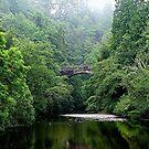 The lost bridge of Foyers, Loch Ness, Scotland. by Roy  Massicks