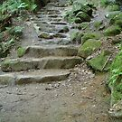 Stone Steps by WickedJuggalo