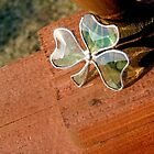 Shamrock in the Sun by Mardra
