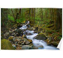 Cascade Stream Poster