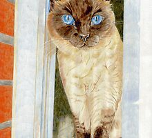 Simone at the Window by Angela Cater