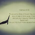 Don't Worry - Matthew 6:26 by RockyWalley