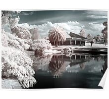 The world in Infrared Poster