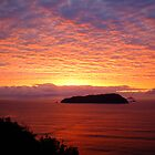 Sky of Fire - New Zealand Greeting Sunrise Over Ocean by Vicktorya Stone