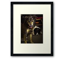 Colour Ruby and Baxter Framed Print