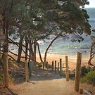 Bunker Bay #2, Western Australia by Elaine Teague