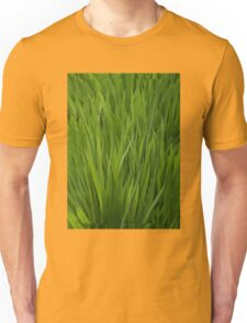 splendor in the grass Unisex T-Shirt
