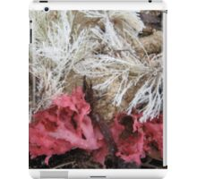 Seaweed and Sand - Prestons Beach, Western Australia, 2010 iPad Case/Skin