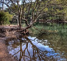 Still Water REFLECTION by Jason Ruth