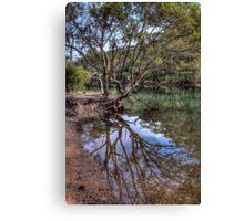 Still Water REFLECTION Canvas Print