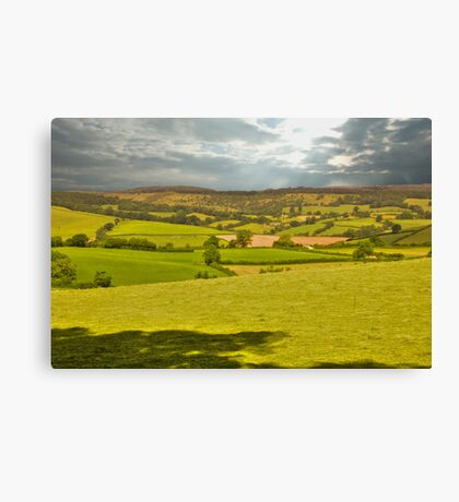 somerset landscape Canvas Print