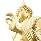 Golden buddha by RobAllsop