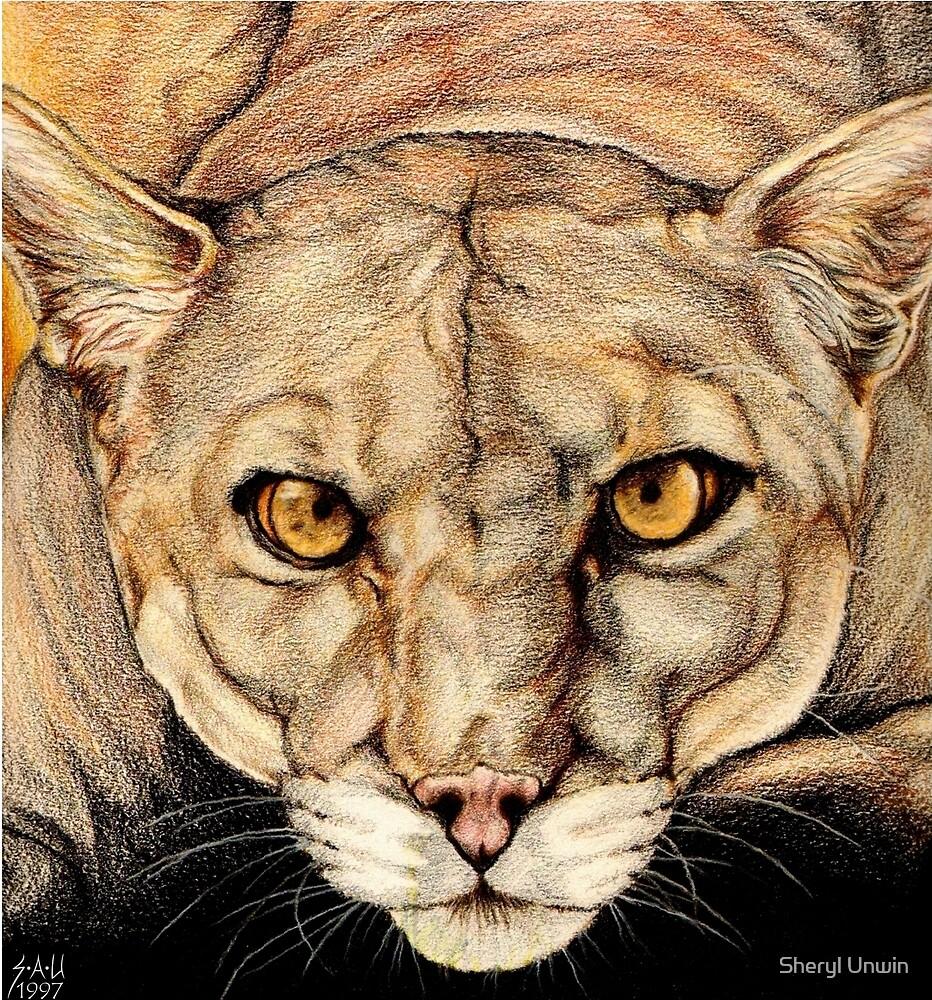 Spirit of the Everglades II by Sheryl Unwin