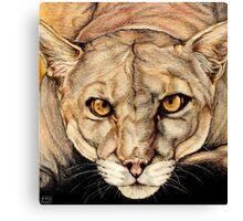 Spirit of the Everglades II Canvas Print