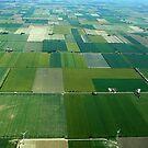 Southern Ontario Farm Fields by Darren Henry