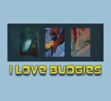 I Love Budgies by Bevin Allison