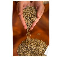 Raw Coffee beans pouring out of hands Poster