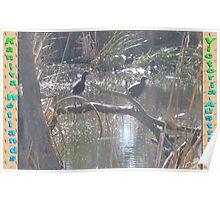 Kaniva Wetlands Poster
