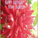 Happy Birthday-Sister by judygal