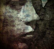 Fading by Sybille Sterk