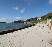 Tresco Sea View by francesbel