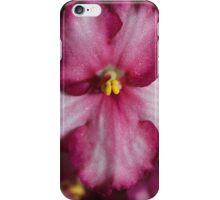 Dark Pinky-red African Violets  iPhone Case/Skin
