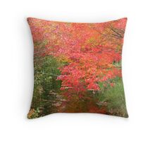Otter River Colors Throw Pillow