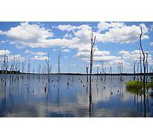 Manasquan Reservoir Photographic Print