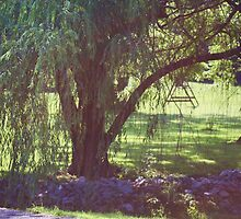 UNDER THE WILLOW TREE by Pauline Evans