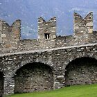 Castle Wall by Indrani Ghose