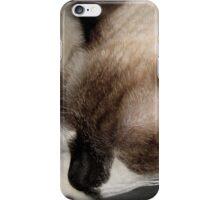 Catnip Dreams iPhone Case/Skin