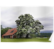 Magestic Tree, and Childhood Memories   Poster