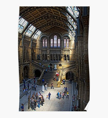 National History Museum, London Poster