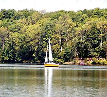 Sailing At Cowan Lake by Debbie Meyers