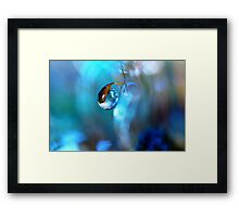 Moss in Blue Framed Print