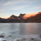 Morning Glory_Cradle Mountain by Sharon Kavanagh