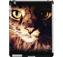 Silly Whiskers iPad Case/Skin