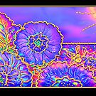 Poster, Print, 'Psychedelic Suncatcher' by luvapples downunder/ Norval Arbogast