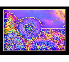 Poster, Print, 'Psychedelic Suncatcher' Photographic Print