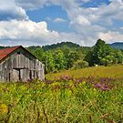 Ironweed & Barn by Nicole  McKinney